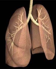 Akciğer kanseri genetik mi?